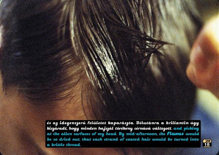 Fluxus Hair Tainer | Fluxus hajfény_18