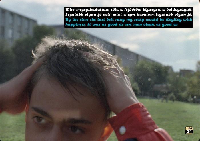 Fluxus Hair Tainer | Fluxus hajfény_24