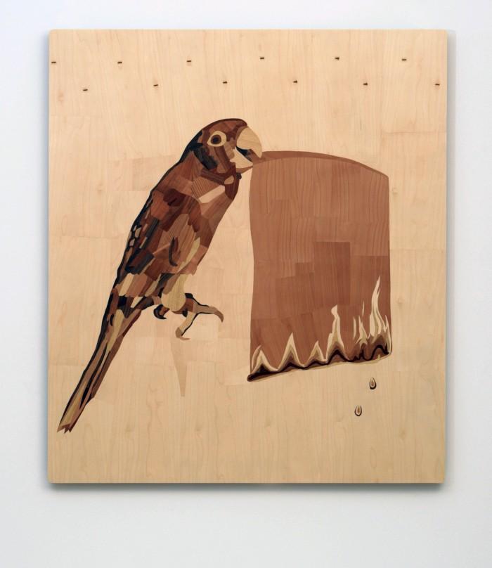 Parrot With a Flaming Slip Of Paper In Its Beak | Papagáj, csőrében lángoló cédulával_01